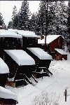 Fresh Fallen Snow At Club Tahoe